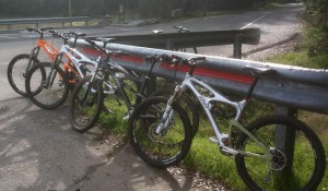 Demo ibis bikes for sale